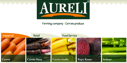 Sito web Aureli