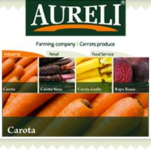 Servizio svolti per Aureli