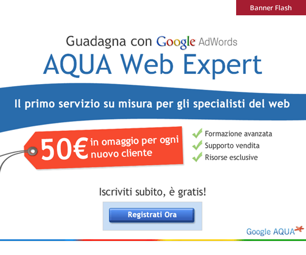 Google - Banner Flash