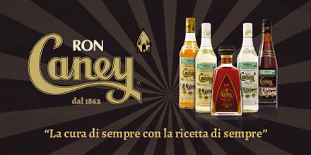 Ron Caney web marketing